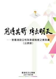 bureau d int駻im 用得其所跨出明天 對香港設立性別承認制度之意見書 公眾版 by