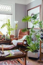 Home Interior Plants by Decorating With Plants Modernize