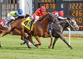 flipcup and surgical strike prevail in photo finishes at arlington