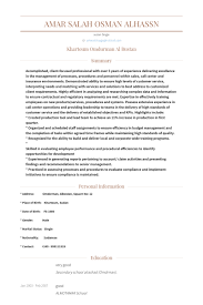Insurance Agent Resume Sample by Call Center Agent Resume Samples Visualcv Resume Samples Database