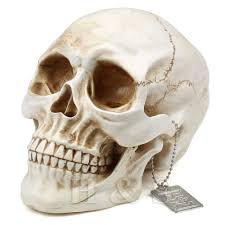Halloween Ornaments Uk Human Skull Collectables Ebay