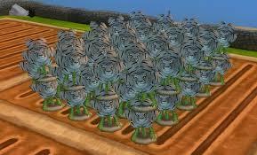 wizard101 and pirate101 spiral compendium wizard101 gardening