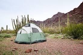 387 Best Rustic Or Primitive Cing Organ Pipe Cactus National Monument U S National Park