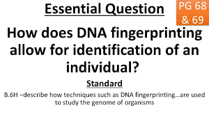 happy tuesday bellwork read the article on your table about dna