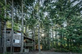 Amazing Tree Houses by Best Kid Friendly Tree Houses