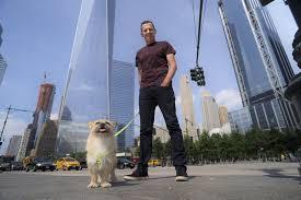 Wildfire Edinburgh Book by Scruffy Little Dog Named Gobi Scores Book Movie Deals Sfgate