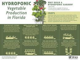 gardening solutions infographics gardening solutions