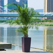 decorative indoor plants shopping mall chinese antique decorative indoor plants pot buy