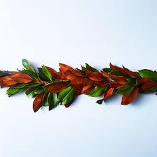 magnolia leaf garland magnolia garland on food52