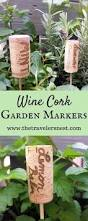 Vegetable Garden Labels by 28 Best Backyard Gardening Images On Pinterest Gardening