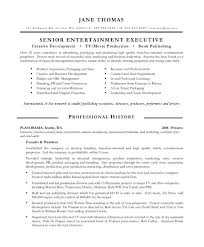 It Executive Resume Samples by Entertainment Executive Resume Samples U0026 Examples