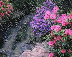 imagenes de paisajes lluviosos paisaje lluvioso trabajosedicion3 blogspot com