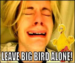 Texts From Mitt Romney Meme - the best of the big bird vs mitt romney memes pophangover