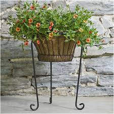 Sincere Home Decor Oakland Wrought Iron Scalloped Fernery Plant Stand Metal Planter 23 Gif