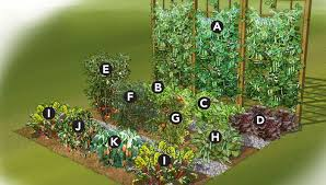 Fruit And Vegetable Garden Layout Vegetable Garden Plan