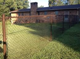 exterior creative chain link fence idea for backyard with bamboo