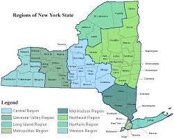 nys professions infection control training providers
