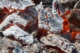 11 crazy but practical uses for wood ash got pets try no 5