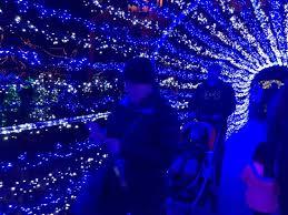 christmas lights at the zoo indianapolis outside under the lights picture of indianapolis zoo indianapolis