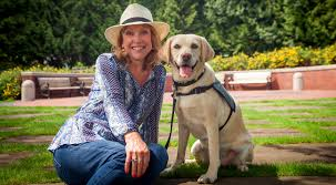 Dogs For The Blind Adoption Guide Dogs For The Blind Career Change Dogs