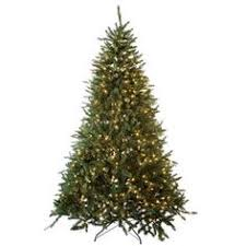 jingle all the way this gorgeous 7 1 2 barbara pine tree with
