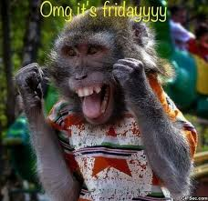 Its Friday Meme Pictures - its friday viral viral videos