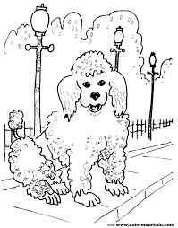 pretty poodle color sheet create a printout or activity