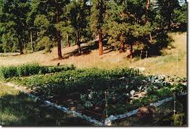 high altitude gardening vegetable gardening