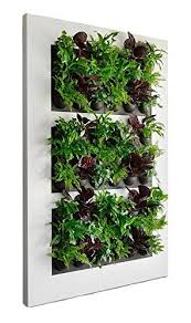 Indoor Vertical Gardens - indoor vertical garden solutions for your wall the high tech society