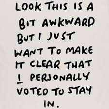 Personally I Personally Voted To Stay In T Shirt Djtees Com