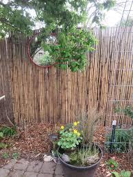 garden out of eden