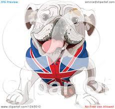 clipart of a cute bulldog sitting in a british flag shirt