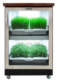 Urban Herb Garden Ideas - ideas for growing herbs right in your kitchen gardens ideas and