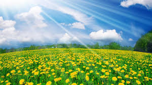 Beautiful Pictures Of Spring by Spring Images Wallpaper The Wallpaper