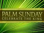 Palm Sunday 2015 HD images free download | Happy New Year