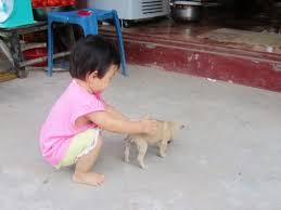 childhood obesity essay sample 100 original papers essay dog kids essay on my pet dog in marathi acknowledgers ningessaybe me essay dog essay writing binary options