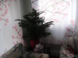 christmas tree at walmart christmas lights decoration