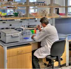 lab bench molecular biology how smart lab design and layout ensure optimal procedures