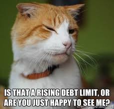 Sneaky Cat Meme - meme time 9 cats using pickup lines from the government shutdown