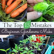 15 mistakes that beginner gardeners make