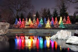 Zoo Lights Dates by Christmas Time At Lincoln Park Zoo Favorite Places U0026 Spaces
