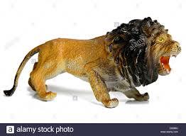 lion figurine plastic lion figurine isolated on white background stock photo