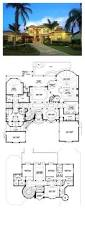 Blueprints For Small Houses by Best 25 Luxury Home Plans Ideas On Pinterest Luxury Floor Plans