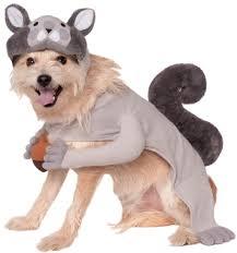 squirrel dog costume costume craze