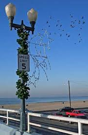 Main Street Lighting Seal Beach Councilwoman Deaton Reports On Main Street Lighting