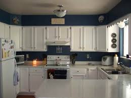 kitchen cabinet painting ideas pictures paint ideas for white beadboard kitchen cabinets apoc by