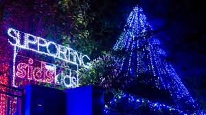 companies that put up christmas lights light up the night good cause gains a guinness world record the