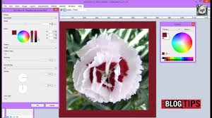 how to add a border to pictures with paint net youtube
