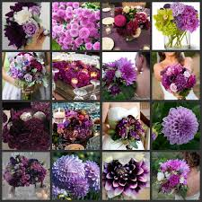 Flowers By Violet - purple flowers by the dozens beautiful gardens to enjoy