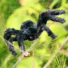 free spider koop goedkope free spider loten van chinese free